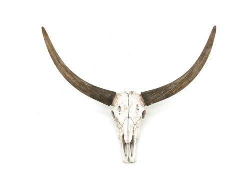 SNUGG By-boo_Ox skull härän pääkallo