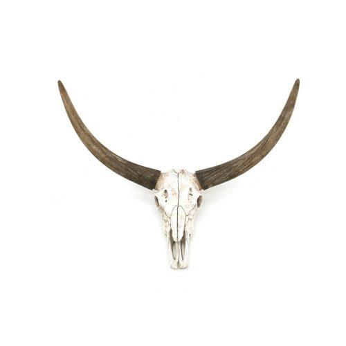 Snugg Ox Skull p??kallo natural, BY-BOO